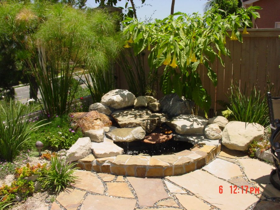 Lorenzo Blogs Landscaping Backyards Pictures